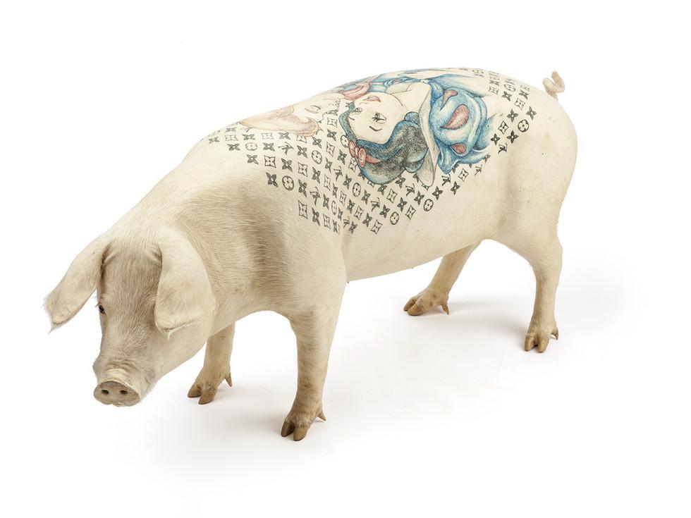 Tatuajes en Animales, Una Práctica Tristemente en Aumento