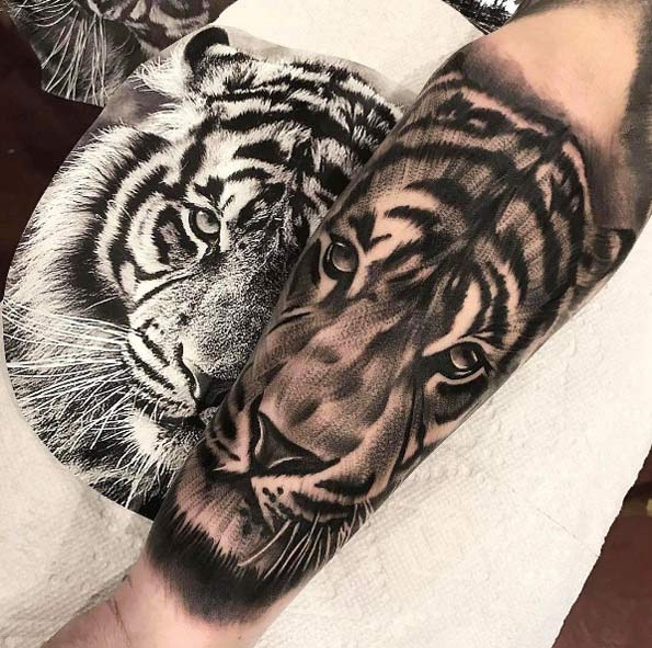 41 Sorprendentes Tatuajes de Tigres y su Significado